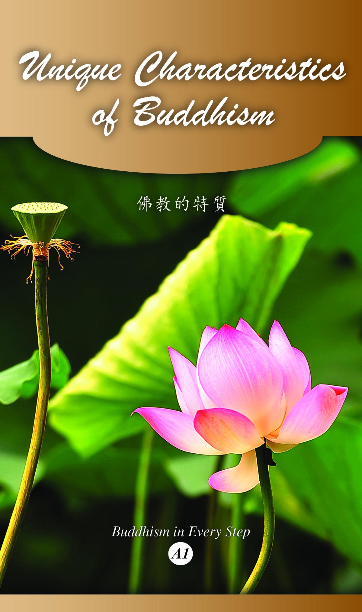 Unqiue characteristics of buddhism fgsitc unique characteristics izmirmasajfo Image collections